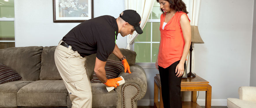 Westminster, CA carpet upholstery cleaning